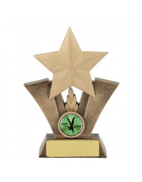 Star Resin Trophy 160mm