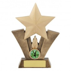 Star Resin Trophy 195mm