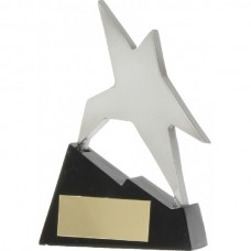 Star on Stairs Award 110mm