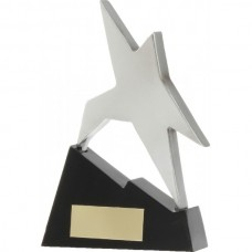 Star on Stairs Award 130mm