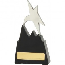 Star on Stairs Award 150mm