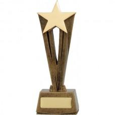 Star Raised Award 170mm