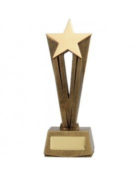 Star Raised Award 195mm
