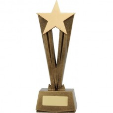 Star Raised Award 220mm
