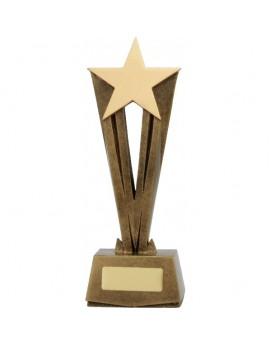 Star Raised Award 320mm