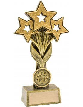 Cascade Stars Award 165mm
