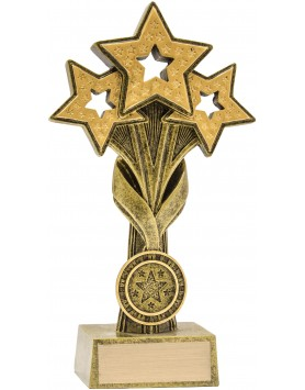 Cascade Stars Award 210mm