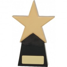 Star Award 160mm