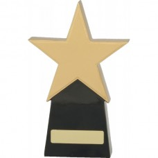 Star Award 210mm