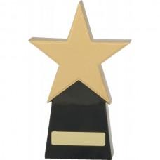 Star Award 210mm