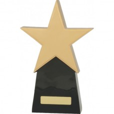 Star Award 260mm