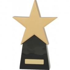 Star Award 260mm