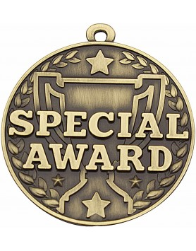 Academic Medal - Special Award