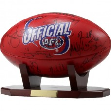 Aussie Rules/Gridiron Ball Holder