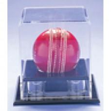 Acrylic Ball Display - Cricket/Baseball/Softball