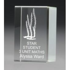 Crystal Budget Block Award 100mm