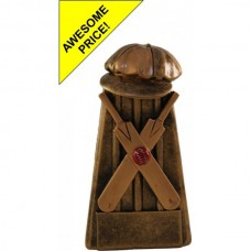 Cricket Participation Award 120mm