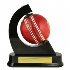 Ball Holder Cricket 167mm