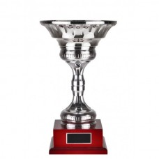 Cup & Stems Silver 370mm
