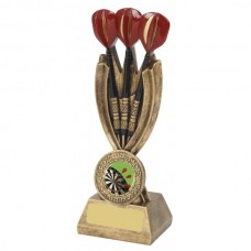 Darts Resin Trophy 165mm