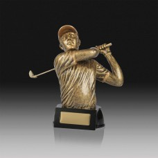 Golfer Male Trophy 160mm