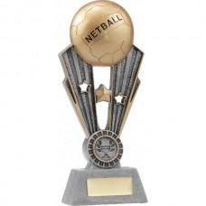 Netball Fame 220mm