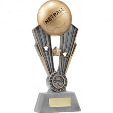 Netball Fame 245mm