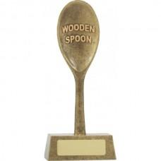 Wooden Spoon Award 165mm