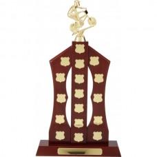 perpetual Trophy Rosewood 490mm